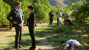 The Mentalist: 3 Staffel 9 Folge