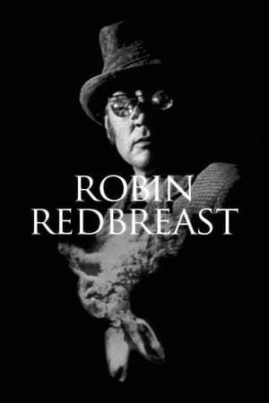 Image Robin Redbreast
