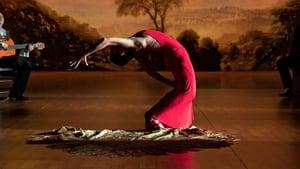 Flamenco Flamenco (2010)