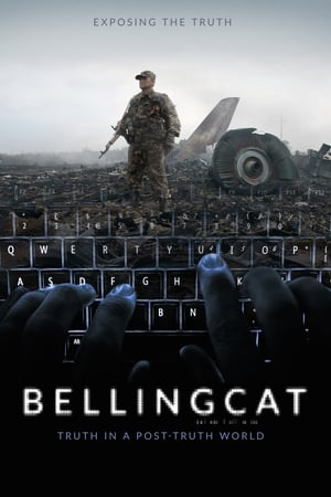Watch Bellingcat - Truth in a Post-Truth World Full Movie