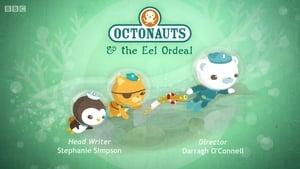 The Octonauts: 1×42