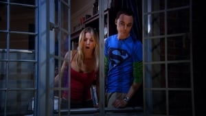 Episodio TV Online The Big Bang Theory HD Temporada 2 E7 La polarización panty piñata