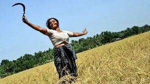 Malayalam movie from 2014: Vasanthathinte Kanal Vazhikalil