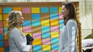 Grey's Anatomy: S11E13 1080p Dublado e Legendado