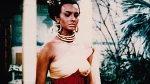 cattura di Aida