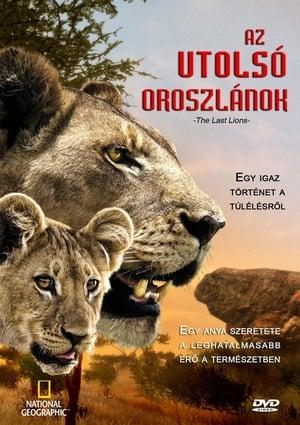 უკანასკნელი ლომები The Last Lions