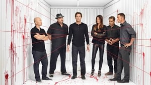 Dexter Season 1-8 Batch