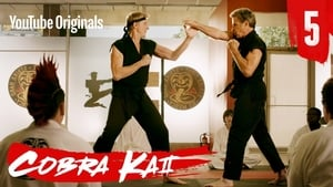 Cobra Kai: 2 Temporada x Episódio 5