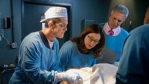 Mroczne zagadki Los Angeles Sezon 5 odcinek 14 Online S05E14