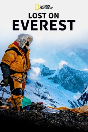 Lost on Everest (2020)