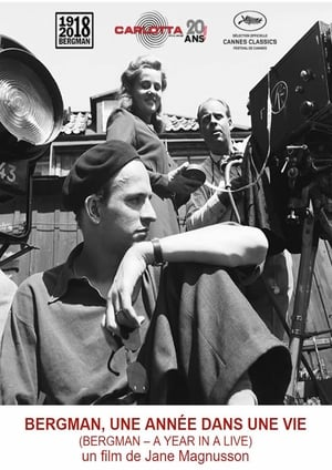 Watch Bergman - A Year in Life Full Movie