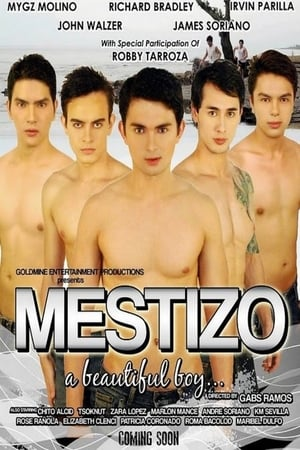 Mestizo: A Beautiful Boy