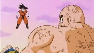 Dragon Ball Z Capitulo 29