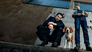Berlińskie psy online