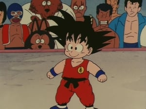 Dragon Ball: 1×20