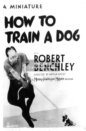 How to Train a Dog (1936)