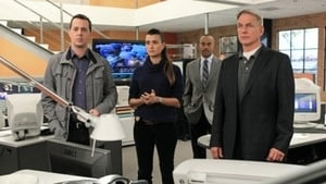 NCIS Season 10 :Episode 17  Prime Suspect