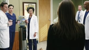 Grey's Anatomy Season 11 : Episode 22