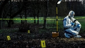 Forensics: The Real CSI: Season 1 Episode 3 S01E03