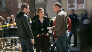 Chicago Police Department: 2×21