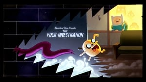The First Investigation