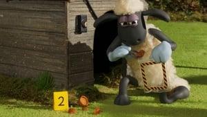 Shaun das Schaf: 6×6