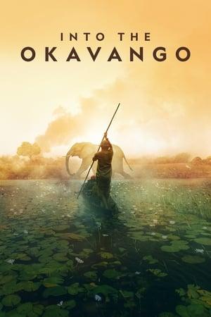 Image Into the Okavango