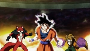 Dragon Ball Super: 5×22