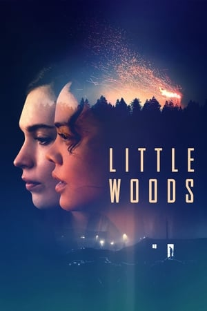 Baixar Little Woods (2019) Dublado via Torrent
