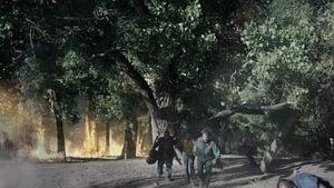 Tempestades em Série Dublado Online