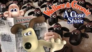 Wallace & Gromit – Unter Schafen (1995)