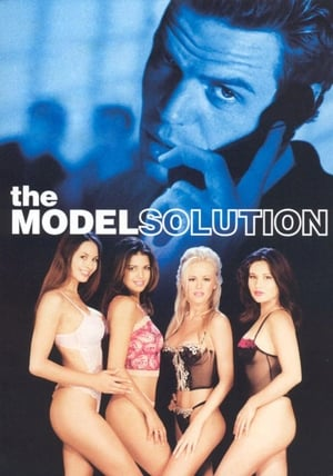 The Model Solution 2002