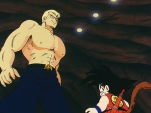 Dragon Ball: 2×25