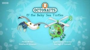 The Octonauts: Season 4 Episode 4