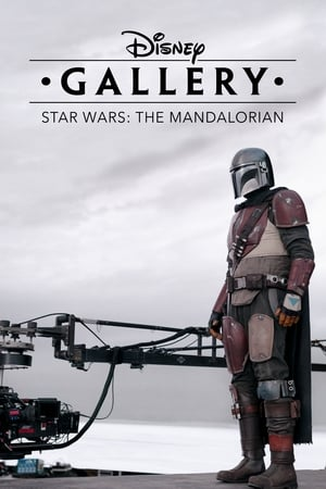 Disney Gallery: The Mandalorian: 1×5