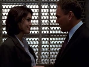 Law & Order: Special Victims Unit Season 1 :Episode 8  Stalked