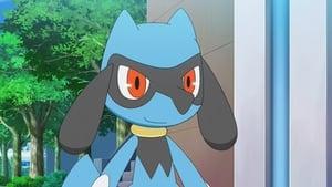 Pokémon: 23×21