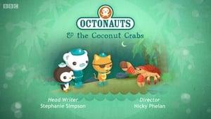The Octonauts: 2×3