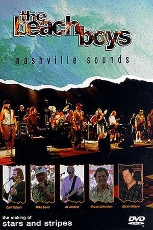 Play The Beach Boys: Nashville Sounds