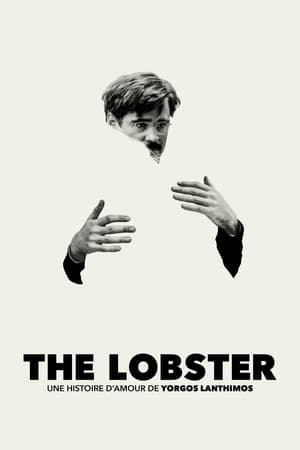 The Lobster film posters