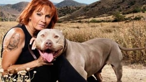 Pit Bulls and Parolees: 16×6