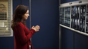 Episodio HD Online Anatomía de Grey Temporada 8 E15 ¿Me has visto últimamente?