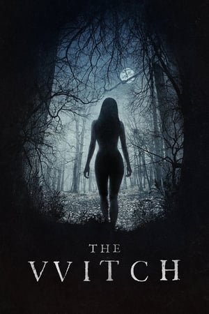 Poster The Witch (2015)