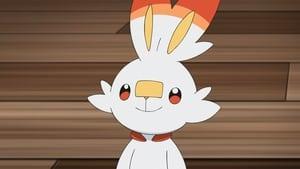 Pokémon: 23×15