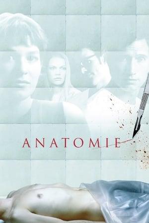 Anatomia - Poster