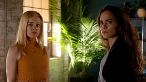 Queen of the South: s05e01 online
