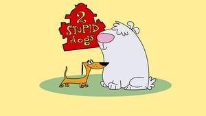 images 2 Stupid Dogs