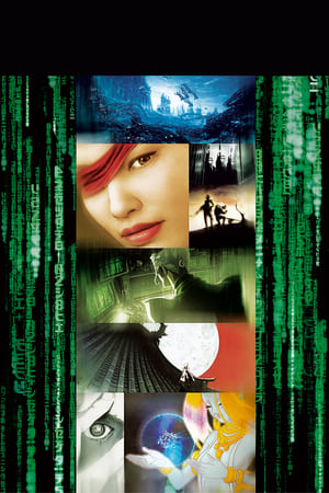 poster The Animatrix