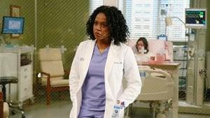 Grey's Anatomy sezonul 11 episodul 20