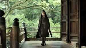 The Assassin [2015]